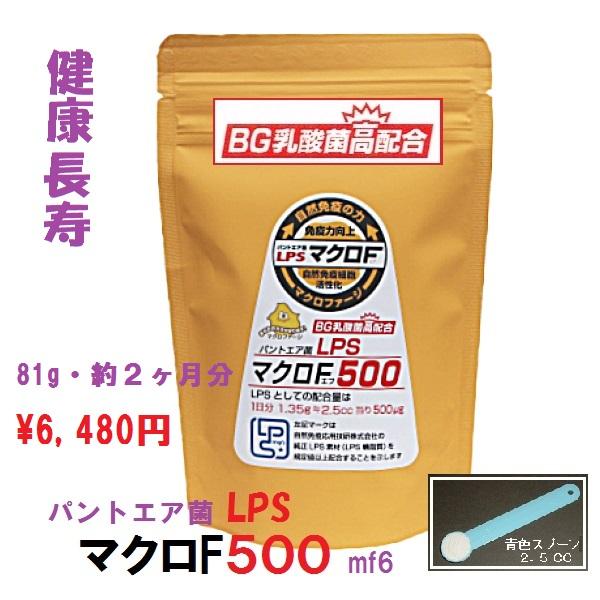 マクロF500-06